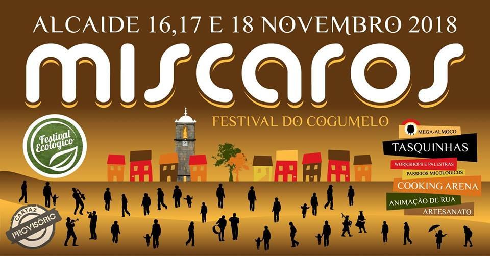 Festival dos Miscaros